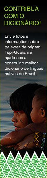 Abacaxi Dicionário Ilustrado Tupi Guaranidicionário Ilustrado Tupi